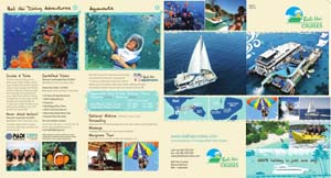 BHC company brochure design