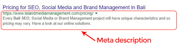 SEO Basics: Meta tags | Island Media Management