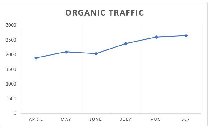 Healthcare Organic Traffic